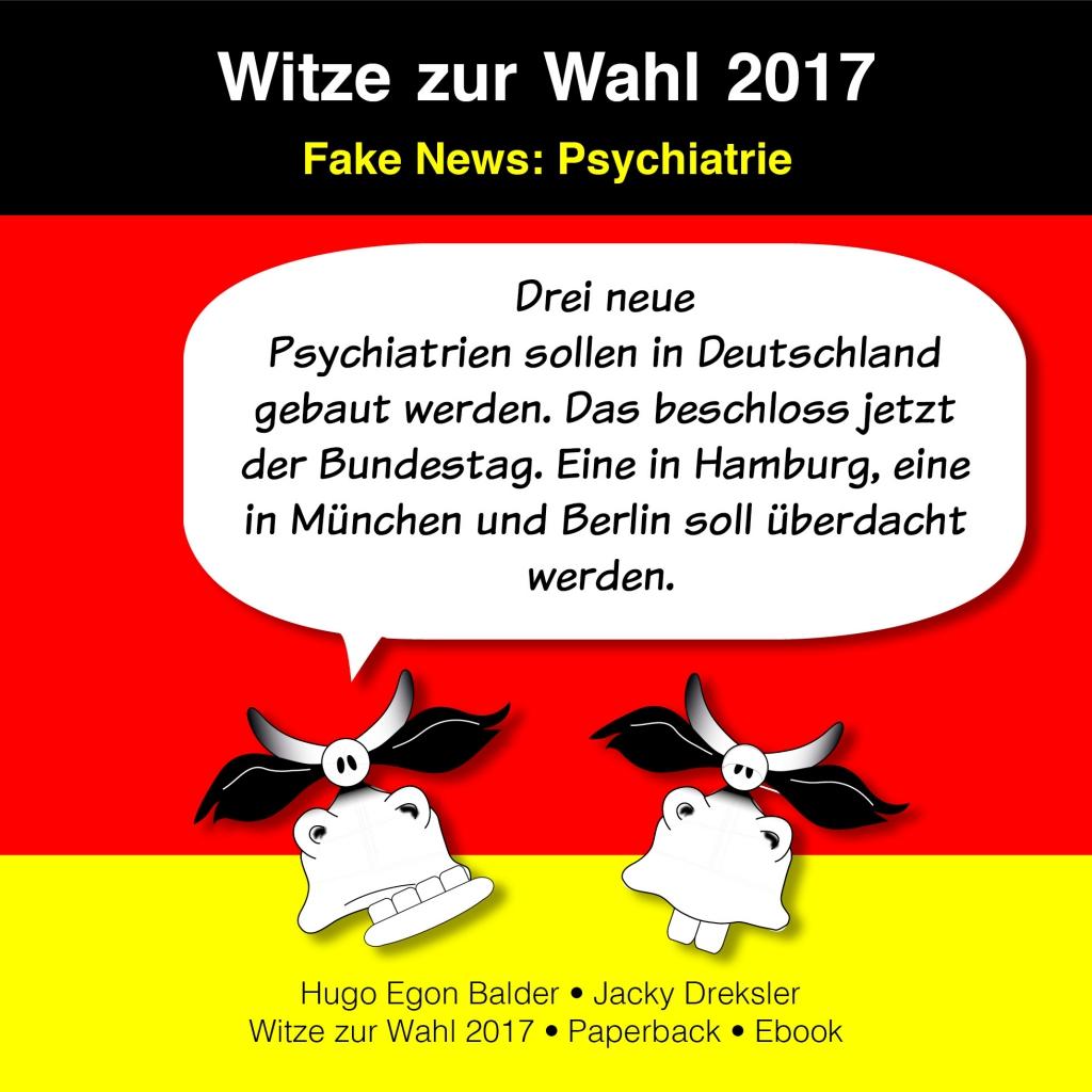 Drei neue Psychiatrien sollen in Deutschland gebaut werden. Das beschloss jetzt der Bundestag. Eine in Hamburg, eine in München und Berlin soll überdacht werden.
